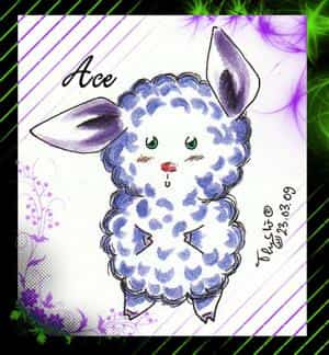 Ace, The sheep