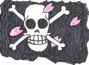 Dr.Baders Flagge