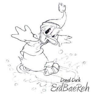 Donald Duck (Skizze)