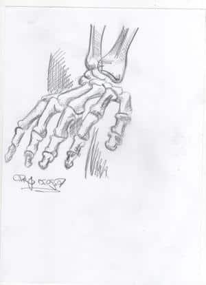 Skizze Skelett