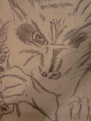 Wolf Killt Mensch