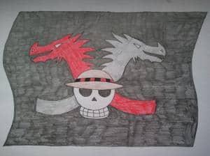Flagge für die Zwillingdrachen piraten