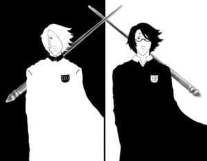 Black and White Harry/Draco