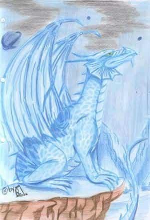 Blauer Drache!!!